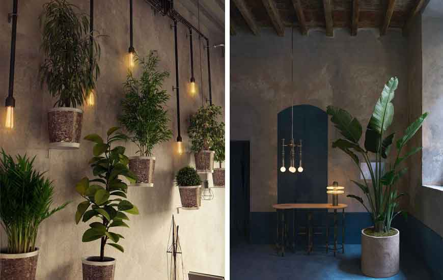 plant for Industrial design - دکوراسیون به سبک صنعتی