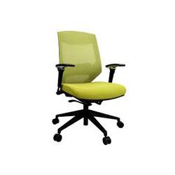 صندلی کار ارگونومیک