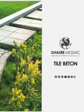 ghasre-mosaic-concrete-tile-2