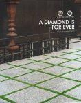ghasre mosaic washbeton 6 118x150 - واش بتن ۳۰ در۶۰ قصرموزاییک