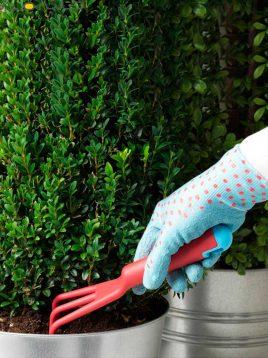 ابزار باغبانی ۳ عددی ایکیا