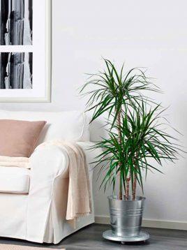 ikea-model-sockerH24-metal-vases