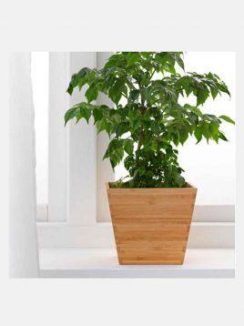 ikea-model-vildapel-square-bamboo-vases