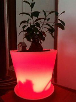 گلدان نورانی آذین پلی نور مدل رومیزی