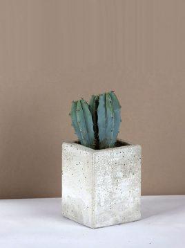 گلدان رومیزی ساده سنگی بتنی دکوسیتی مدل DCO4