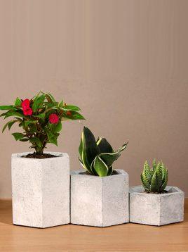 ست سه تایی گلدان رومیزی بتنی دکوسیتی مدل DCO21