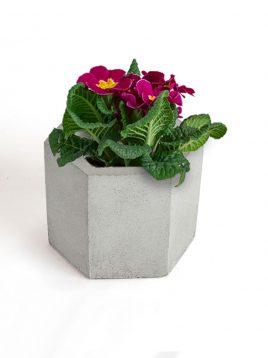 گلدان رومیزی شش وجهی بتنی دکوسیتی مدل DCO18