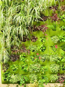 دیوار سبز بابل مدل خانه بزرگ